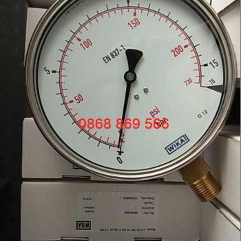 Đồng hồ áp suất WKA 212.20