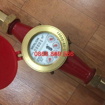 Đồng hồ đo nước nóng Merlion